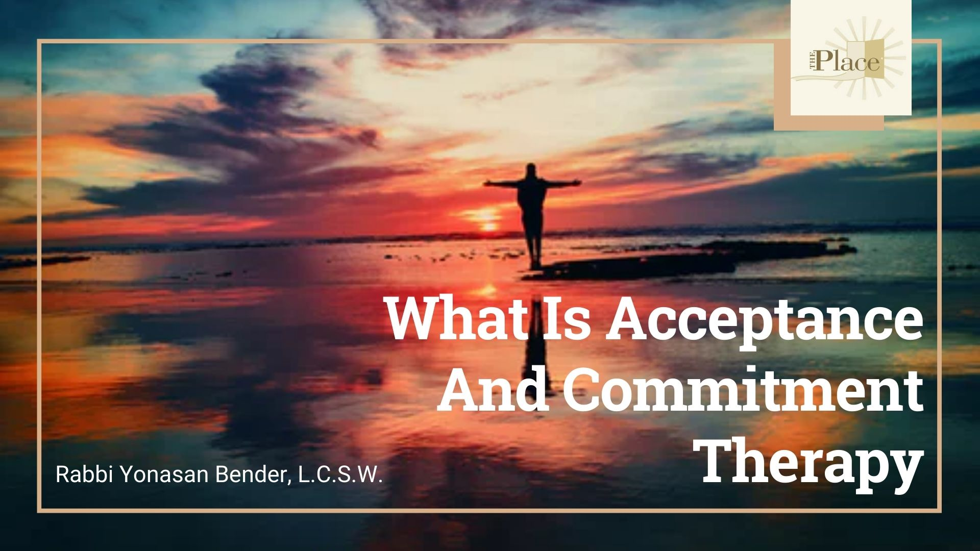 ACT Effectively: Introduction to Acceptance and Commitment Therapy